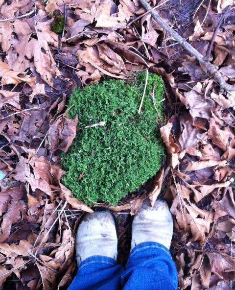 farm_feet