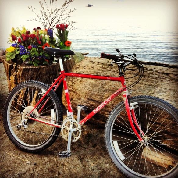 beach_bike2