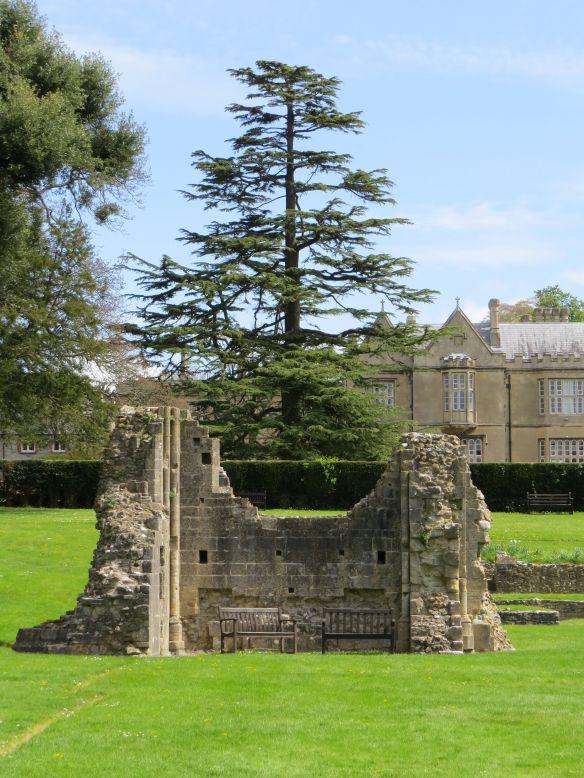 glastonbury_abbey8