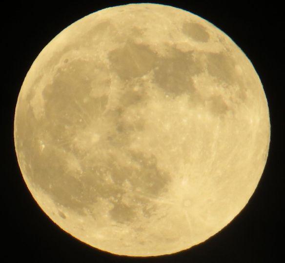 moon1_24May13