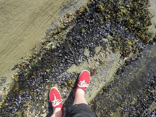 SI_feet2