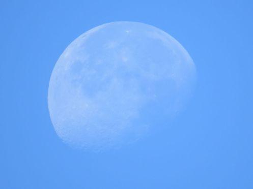 daytime_moon2
