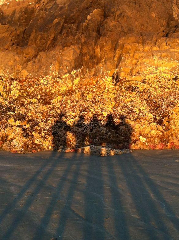 shadows_rock