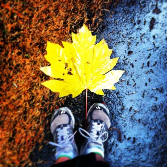 running_leaf