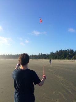 kites2