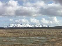 Lava field in the mid-Atlantic rift, where the Eurasian and Atlantic plates are pulling apart